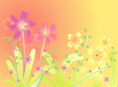Spring Flower background Stock Vector - 15220128