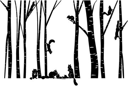 자작 나무 숲에서 다람쥐 가족 일러스트