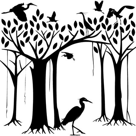 back lit: Egrets and banyan tree forest in Silhouette illustration