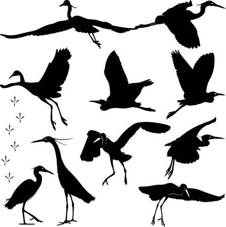 egret: Egrets Silhouettes Illustration Illustration