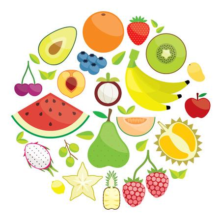 granny smith apple: Colorful Fruit Circle illustration