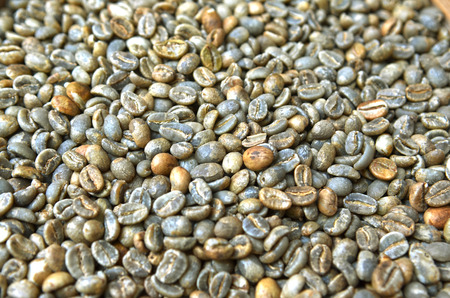 unroasted: Raw unroasted bali coffee beans background Stock Photo