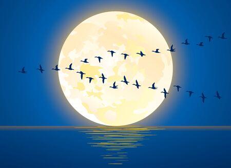 Illustration de la pleine lune et des oiseaux migrateurs