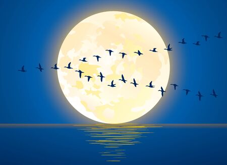 Illustration of full moon and migratory birds