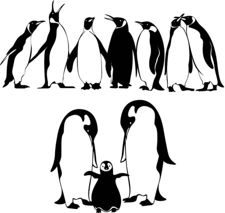 King penguin and Emperor penguin silhouette illustration in different pose set