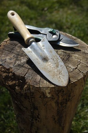 upturned: Garden tools on an upturned log. Stock Photo