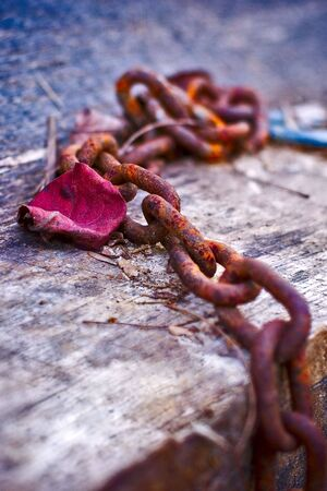 rusty chain: A rusty chain rests on a stack of wooden planks in the fall. Stock Photo