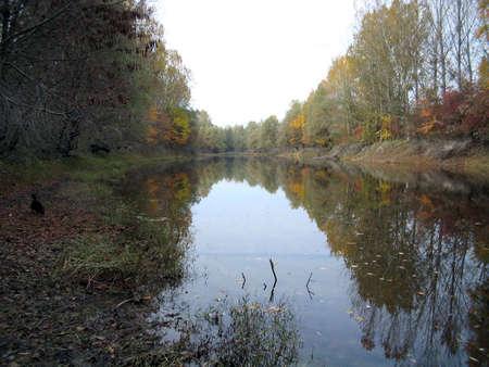 River backwater fall scenery