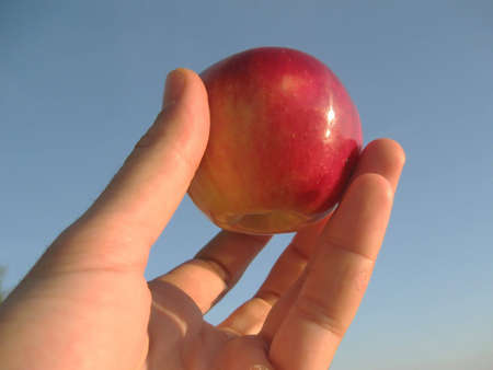 hand holding an apple over a beautiful blue sky in the background Stock Photo - 3641843
