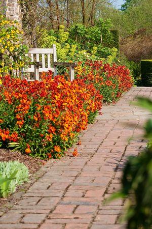Path in an English garden Stock Photo - 4740447