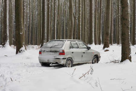 driving conditions: Snow covered car during a snowstorm in forest