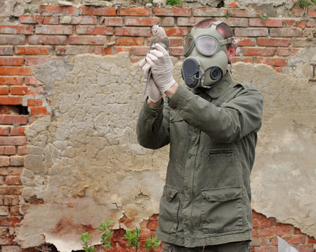 turtle dove: Man with gas mask and green military  clothes  explores  dead bird after chemical disaster.