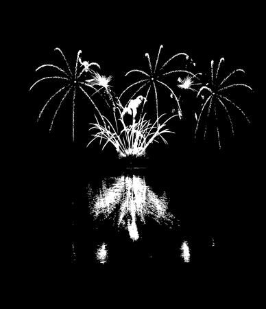 reflection: Vector Fireworks with reflection on lake