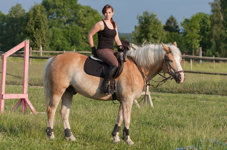 A young woman posing on  a horse, horse breed Haflinger.