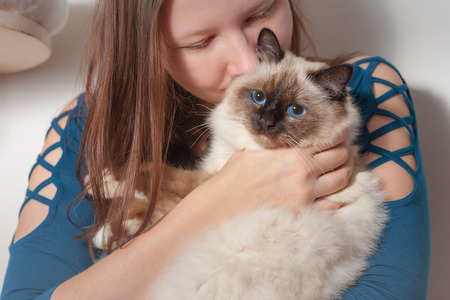 Young woman is hugging her seal point Birman cat, 9 month old cat, male with blue eyes