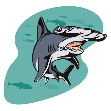 Hammerhead shark searching for prey Stock Photo - 1350659