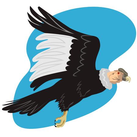 Cóndor andino en vuelo