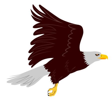 predators: Eagle in flight wings up