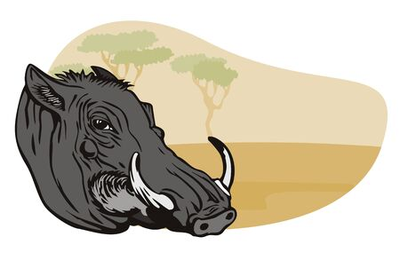 Warthog with safari background Stock Vector - 1391111