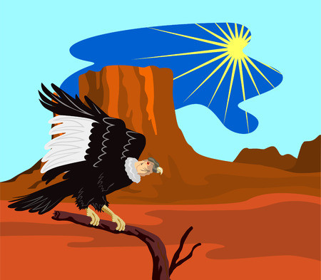 buzzard: Andean condor perched on a branch with mesa Illustration