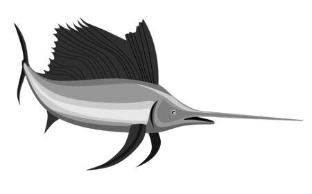 sailfish: Pez vela en fondo blanco