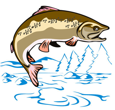 Leaping Brown Trout Stock Vector - 1898392