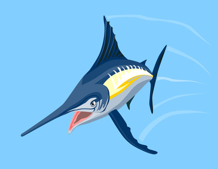 hopping: Blue marlin swimming towrds you
