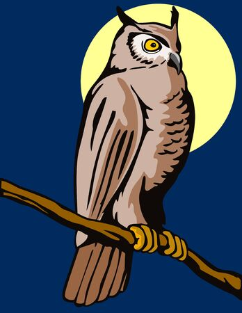 bird of prey: Owl perched on a branch with moon Illustration