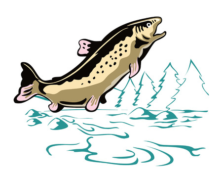 Leaping Brown Trout Stock Vector - 2021126