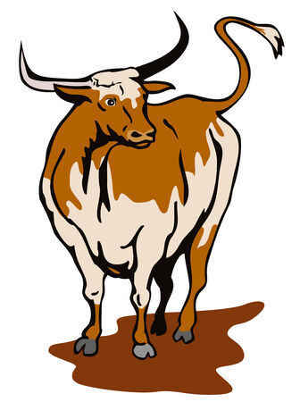 raging: Texas longhorn bull Illustration