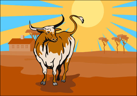 Texas longhorn bull Stock Vector - 2064568