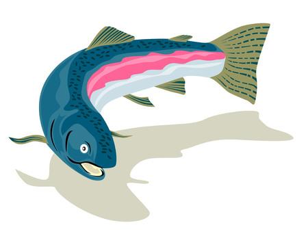 Rainbow trout Stock Vector - 2323319
