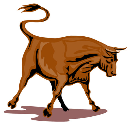 charging bull: Raging texas longhorn bull Illustration