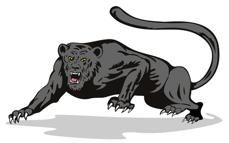 pounce: Panther on the prowl ready to attack Illustration