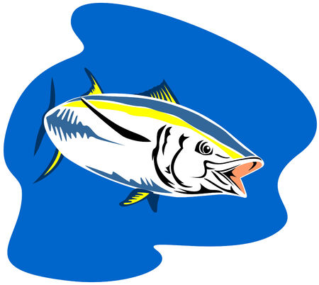 Yellow finned tuna Stock Vector - 2580591