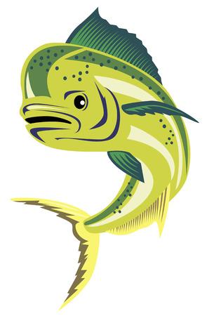 dorsal: Dorado dolphin fish
