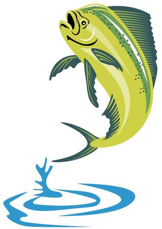 dorsal: Dolphin pescado  Vectores