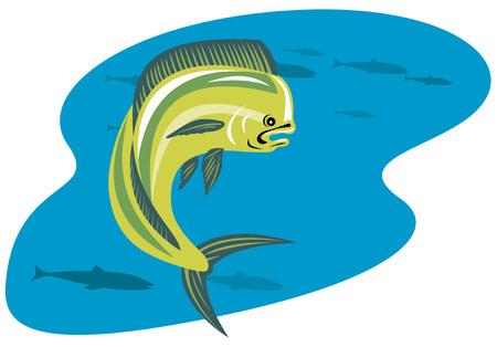 dorado: Mahi-mahi dolphin fish Illustration