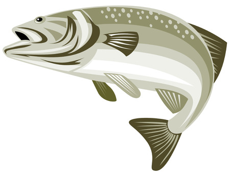 Spotted Bass leaping Vector