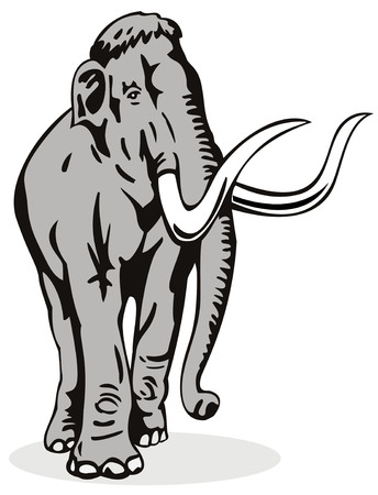 black mammoth: Mammoth with large tusk