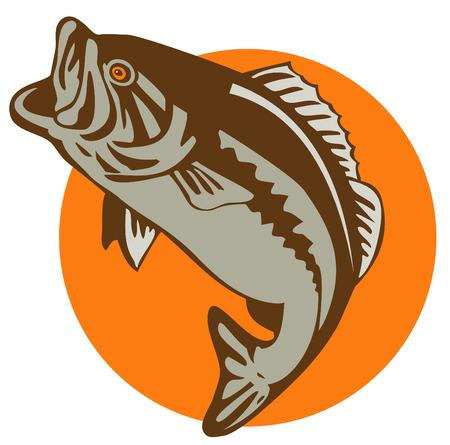 fly fishing: Bass jumping