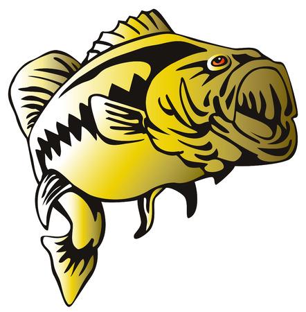 Largemouth bass jumping Vector