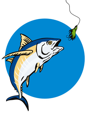 catching: Albacore Tuna taking the bait Illustration