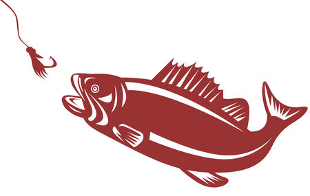Largemouth bass attracted to a lure Illustration