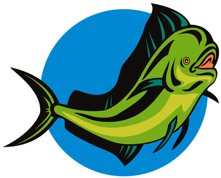 Dolphin fish Stock Vector - 3081100