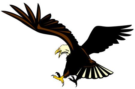 Eagle in flight Stock Vector - 3081120