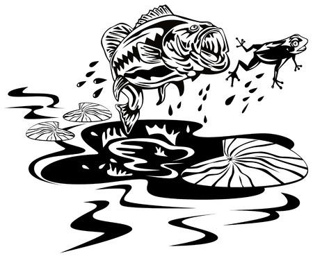 largemouth bass: Bass saltar a la captura de ranas  Vectores
