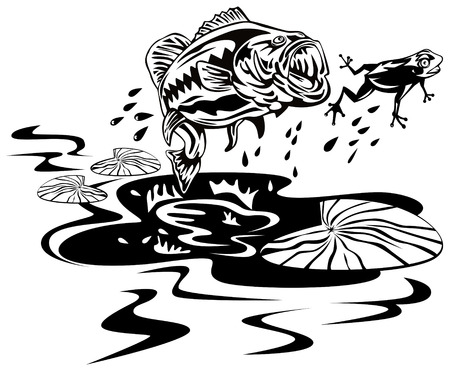 spigola: Bass salto per la cattura di rana  Vettoriali