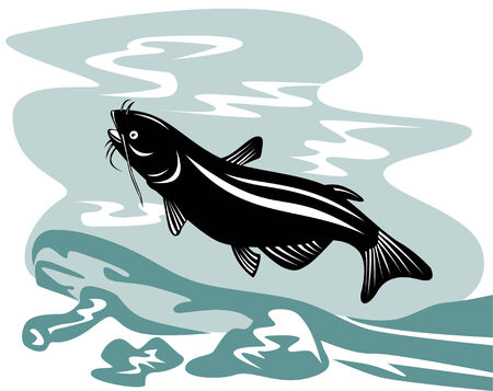 Catfish Stock Vector - 3081117