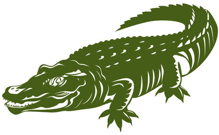 14 859 alligator cliparts stock vector and royalty free alligator rh 123rf com Alligator Reading Clip Art Alligator Outline